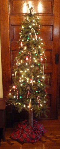 Tree in the foyer