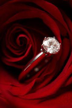 Torinogioielli - Foto realizzata per la campagna San Valentino 2011 - Anelli solitari e rose rosse.