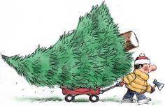 Christmas tree farms in Lexington and area