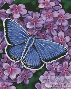 Artecy Cross Stitch. Eastern Tailed Blue Butterfly Cross Stitch Pattern to print online.