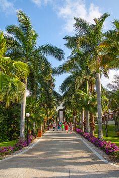 Gardens Bahia Principe Riviera Maya Resort by Éric Senterre, via Flickr  http://www.bahia-principe.com/