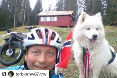I dag er for alle tobente og firbente store og små. . #17mai #norge #reiseblogger #reiseråd  #Repost @torbjornw67.trw (@get_repost)  Gratulerer med dagen  #røyrivannskoia #storelosbyrunden