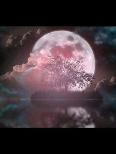 Moons as inall creations have a prime directive. As it is on earth so it is in the heavens.... Giantpenprods. rls54