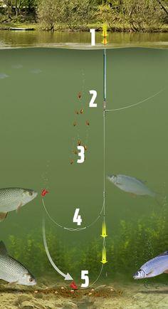 DRENNAN floatfish 100 mètres stickfloat pêcheurs Luv!!