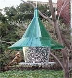 Arundale Mandarin Sky Cafe 17 IN Green Clear Squirrel Proof Dome Gal Circular Tray Bird Feeder Large Bird Feeders, Best Bird Feeders, Hanging Bird Feeders, Squirrel Resistant Bird Feeders, Indestructable Dog Bed, Bird Feeder Plans, Bird Aviary, Thing 1, Backyard Birds