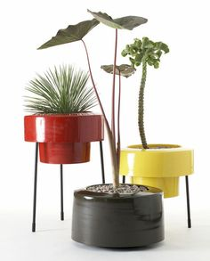 stylish planters under $50 from apartment therapy