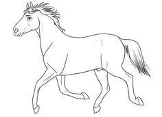 zentangle vorlagen gratis ausdrucken zum ausmalen  selberzeichnen   malvorlagen pferde