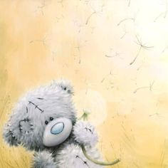 The largest Me to You Bear Store for Me to You, Tatty Teddy and Blue Nose Friend Bears, Cards and Gifts. Tatty Teddy, Cute Images, Cute Pictures, Teddy Bear Pictures, Blue Nose Friends, Love Bear, Cute Teddy Bears, Sympathy Cards, Illustration