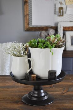 Ironstone Succulent Planter - Little Glass Jar