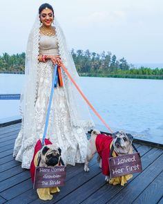 Whenever we think of Bridal entry ideas, Din shaghna Da is what pops up in our minds. And I don't know about not-so-shadi lovers but I don't want to enter on this same old school entry idea. And why to enter in those similar ideas when you have us! Dog Wedding, On Your Wedding Day, Wedding Shoot, Wedding Things, Wedding Bouquet, Perfect Wedding, Wedding Dresses, Bride Entry, Lifestyle Trends