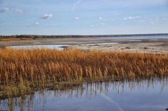 Baltic Sea in Parnu, Estonia via kami and the rest of the world: breathtaking autumn in Estonia