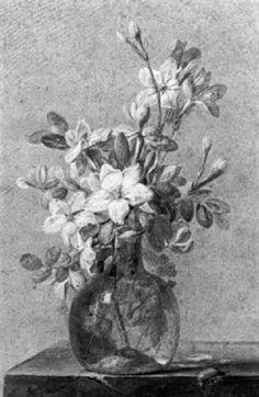 Buquê de flores e besouro. Lápis,  aquarela e guache. Alexis Nicolas Pérignon, o Velho (Nancy, França, 1726 - 1782, Paris, França).