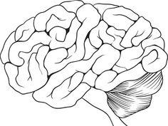 Aivot laiskistuvat 25-vuotiaana - Harrastukset auttavat! | Talouselämä