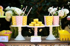 lemonade stand party-9
