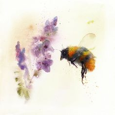 Bumble bee painted by watercolour artist Jane Davies