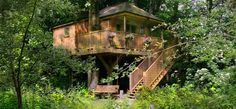 Old Mill Treehouse-Bath and Somerset-Treehouse in the trees