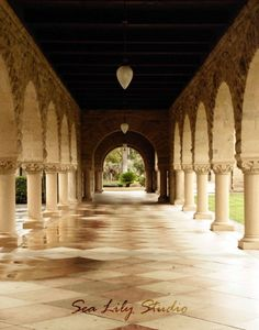 stanford university architect Google Search Clip Board