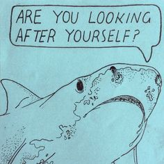 I just really like this for some reason. Maybe 'cause it's a shark? It's both funny and sobering.