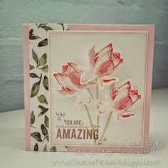 Chlo's Craft Closet - Stampin' Up! Demonstrator: Sneak Peeks: Occasions and SAB Catty - Lotus Blossom
