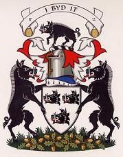 Chief Arms nesbit