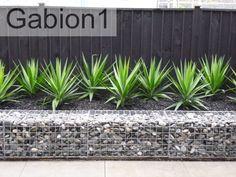 low gabion stone garden wall