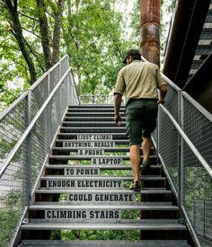 Sustainability Treehouse par Mithun - Journal du Design