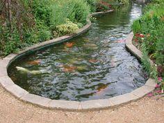 Koi Fish Pond - IDEA FOR ENDING IT