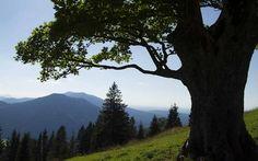 geführte Wanderung Ammergauer Alpen