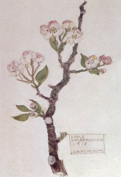 Charles Rennie Mackintosh. Apple. Walberswick, 1915.