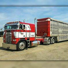 Coe Freightliner custom bull hauler