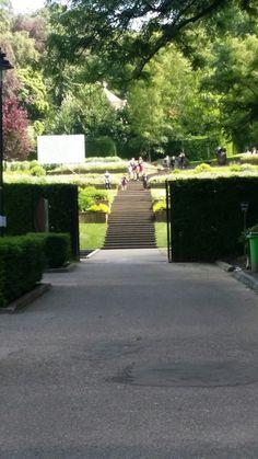 Steile tuin trap sonsbeek in Arnhem