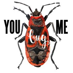 Nikola Vizinová (@art_by_nerea) • Fotky a videa na Instagramu Bugs, Letters, How To Make, Beetles, Collection, Instagram, Paintings, Art, Drinkware