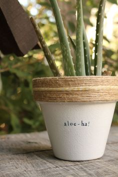 Aloe Ha! by PlantPuns on Etsy