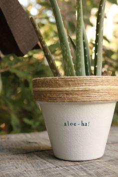 Aloe Ha! by PlantPuns on Etsy