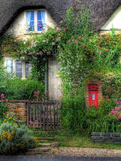 Cottage. love the red door and blue window.