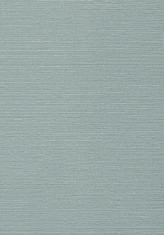 TALUK SISAL, Mineral, T75155, Collection Faux Resource from Thibaut