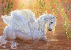 Engel paard