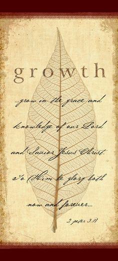 78 Best Fruit Of The Spirit Images Bible Verses Scripture Verses