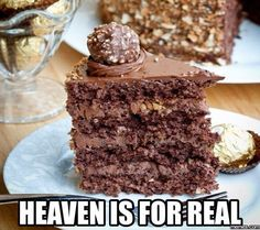 Nutella Cake And Ferrero Rocher Toppings #Funny #Memespic.twitter.com/6fNGhcg1bE http://ibeebz.com