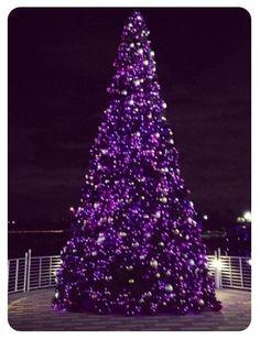 Purple Christmas tree