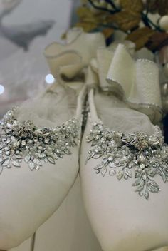 Decorated-Pointe-Shoe. I want to do this with my old pair and then wear them for my senior photo shoot :)