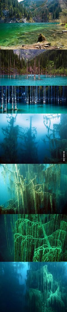 The sunken forest of Lake Kaindy (Kazakhstan) http://paidtravellers.paycation.com