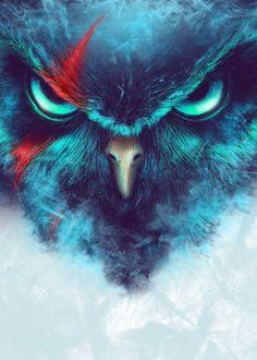 owl animal bird scar warrior fearsome unique art digital design illustration