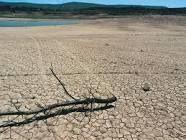 Mucho calor produce sequia, la gente y los animales se quedan sin comer porque se secan los arboles, el agua en los rios, todo