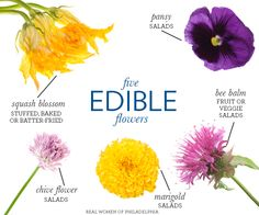 Our Five Favorite Edible Flowers
