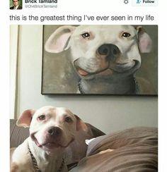 Doggie grin. Love it!