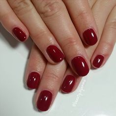 Winter Fav #tintedlove #shellac #cnd #cndshellac #gelpolish #gelnails #naturalnails #nails #notd #mani #nailstagram #nailsofinstagram #sunshinecoast #maroochydore #beautybyemma