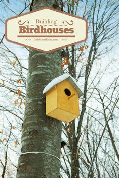 In the Backyard Jungle adventure, Tiger Cub Scouts need to build and hang a birdhouse. Read this post to find out two ways to do this. Cub Scouts Bear, Tiger Scouts, Boy Scouts, Beaver Scouts, Scout Mom, Bird House Plans, Bird House Kits, Cub Scout Activities, Fun Activities