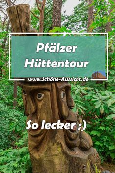 Palatinate hut tour - an ingenious hike! - The Palatinate Hut Tour with its 4 huts is a culinary hike through the Palatinate Forest, but the P -