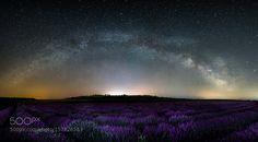 Lavender field by AntonNihtyanov via http://ift.tt/1XHGZT8